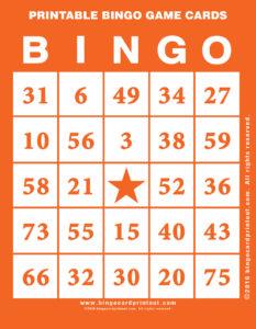 Printable Bingo Game Cards 2