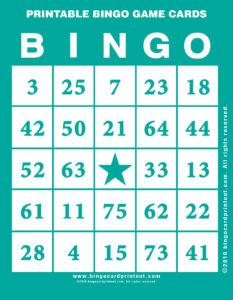 Printable Bingo Game Cards 5