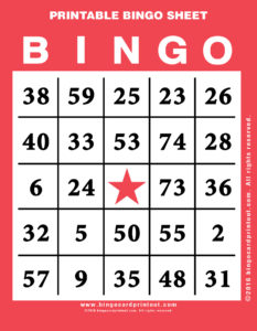 Printable Bingo Sheet 12