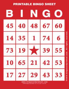 Printable Bingo Sheet