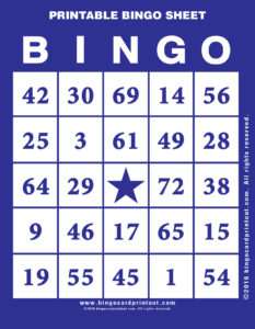 Printable Bingo Sheet 6
